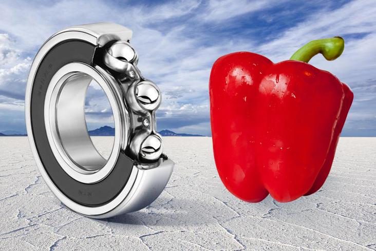 FDA lager voedingsmiddelen
